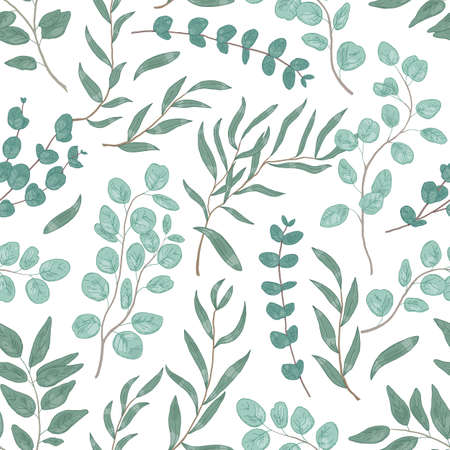 Eucalyptus leaves colorful seamless pattern. Foliage, green floral texture. Hand drawn plant branches and twigs background. Botanical wallpaper, fabric, textile, wrapping paper vector design