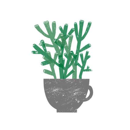 Crassula Hobbit houseplant flat vector illustration. Succulent plant in trendy ceramic pot isolated on white background. Evergreen botanical house decoration element. Domestic decorative greenery.