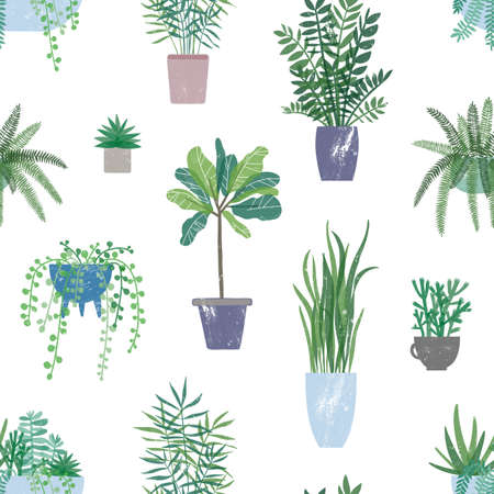 Trendy houseplants seamless pattern. Potted evergreen plant on white background. Indoor flowers backdrop. Domestic decorative greenery texture. Colorful botanical wallpaper, textile design