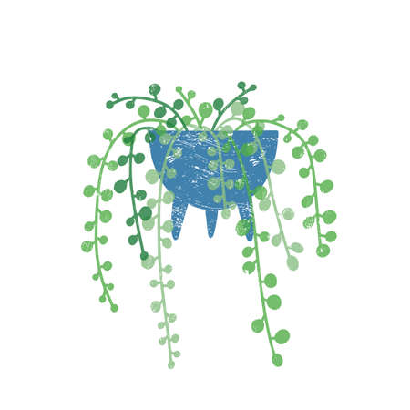 String of pearls houseplant flat vector illustration. Godson Rowley flower in trendy ceramic pot isolated on white background. Cascading succulent, exotic green interior decoration element.