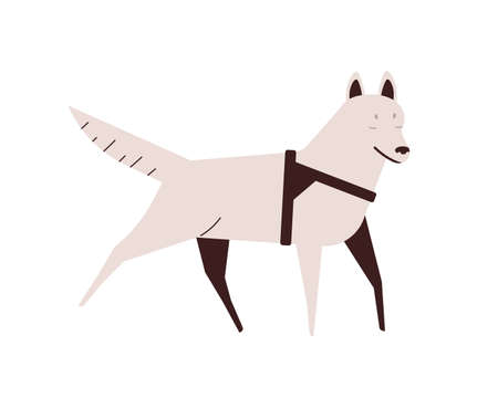 Blind dog flat vector illustration. Active running pet. Puppy with disability, illness concept. Domestic animal design element. Walking purebred white husky isolated on white background Illustration