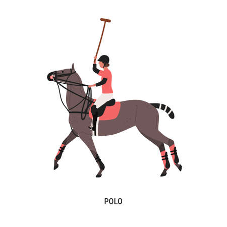 Horse polo flat vector illustration. Game, performance, equestrian sport competition. Polo player riding horse cartoon character. Equine with sports equipment isolated on white background.