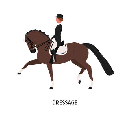 Dressage, horseback riding flat vector illustration. Equestrienne cartoon character. Hoss training, competition preparing concept. Equine and female rider isolated on white background. Ilustração