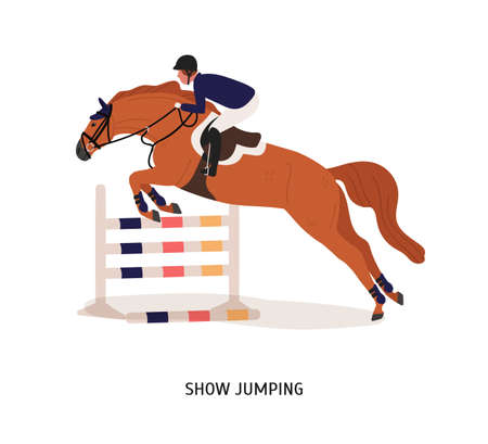 Show jumping flat vector illustration. Horse rider, athlete cartoon character. Equestrian show, horseback riding competition concept. Equine jumping over barrier isolated on white background.