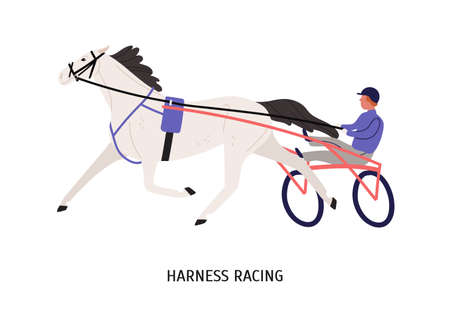 Harness racing flat vector illustration. Male chariot driver cartoon character. Equestrian sport contest, horseback riding competition concept. Harnessed hoss isolated on white background. Stock fotó - 136830817