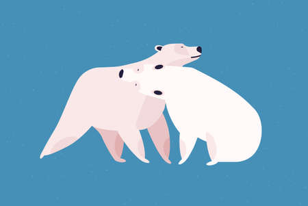 Polar bears couple flat vector illustration. Animal family embrace, love and fondness, tenderness and affection concept. Cute mammals, cuddling white bears isolated on blue background.