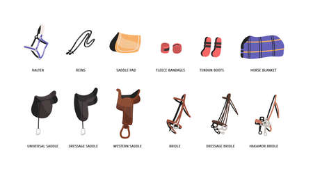 Horse riding outfitting flat vector illustrations set. Saddles, bridles and accessories. Equestrian sport attributes. Horseback riding convenience and safety facilities isolated on white background