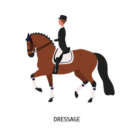 Dressuur, paardrijden platte vectorillustratie. Ruiter stripfiguur. Concept voor het breken, trainen en domesticeren van paarden. Mooie hoss en mannelijke ruiter geïsoleerd op een witte achtergrond.
