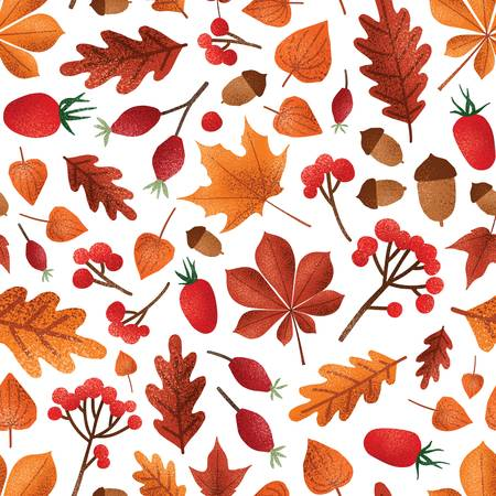 Autumn leaves and berries vector seamless pattern. Fall season foliage with acorns wallpaper design. Red ashberries, cape gooseberries and dogrose berries. Botanical wrapping paper, textile print. Foto de archivo - 138250266