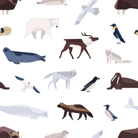 Different cartoon cute polar animals seamless pattern. Various Arctic and Antarctic birds, marine mammals vector flat illustration. Colorful north fauna inhabitant on white background Ilustração