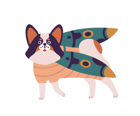 Cartoon dog in funny bug costume vector flat illustration. Colorful domestic animal standing in beetle clothes isolated on white background. Pet papillon breed wearing insect with wings apparel