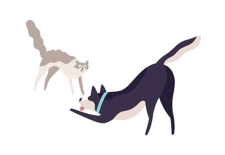 Cartoon scared cat and excited dog fighting vector flat illustration. Cute colorful domestic animal playing together isolated on white background. Two angry pet having aggressive each other Иллюстрация