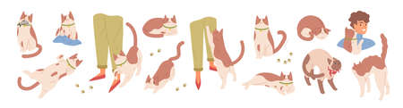 Collection of scenes with cute cat. Various pet emotions. Friendly, scared, sharing food, ready to attack, rubbing, threatening, sharing food, worrying kitty. Vector illustration in flat cartoon style.