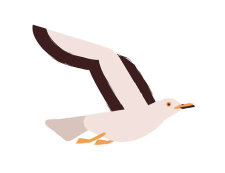 Adorable flying arctic bird vector flat illustration. Colorful seagull raising up wings isolated on white background. Beautiful polar wild winged creature. Nordic seabird, nautical gull Ilustração