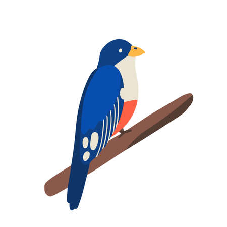 Traditional Cuban animal or tropical bird, trogon sitting on branch. Exotic small jungle birdie tocororo, symbol of freedom. Flat vector cartoon illustration isolated on white background