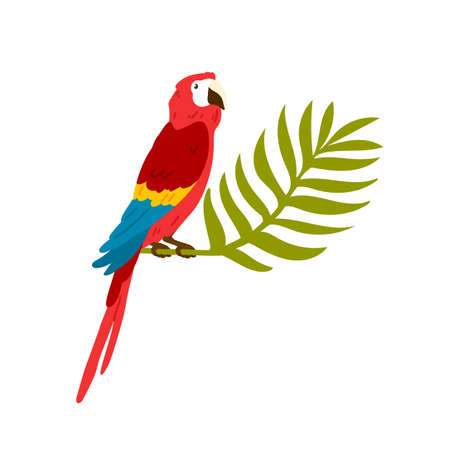 Exotic tropical ara bird, macaw. Big red parrot sitting on jungle palm brunch, leaf. Caribbean exotic character for t shirt print. Flat vector cartoon illustration isolated on white background Stock Illustratie