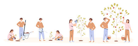 Set of couple planting and caring of tree stages vector flat illustration. Man and woman seedling, cultivation and collecting harvest isolated on white. Concept of collaboration and environment care Ilustración de vector