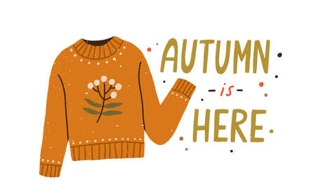Autumn is here colorful lettering composition with warm knitted sweater vector flat illustration. Creative seasonal fall clothes decorated by branch with leaves and berries isolated on white 일러스트