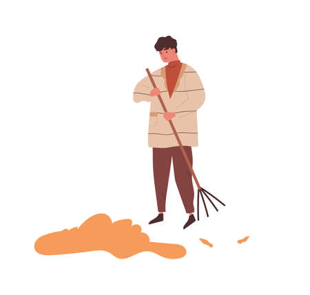 Man raking heap of autumn leaves use rake vector flat illustration. Male sweeping fall dry yellow foliage tidying outdoor area isolated on white. Guy in warm outerwear doing seasonal work 일러스트