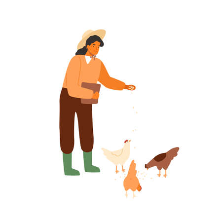 Woman farmer holding bucket of seeds and feeding chickens and hens. Countryside farming. Rural scene with agricultural worker and poultry. Flat vector cartoon illustration isolated on white 向量圖像