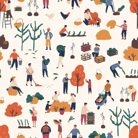 Seamless pattern with people pick autumn harvest at farms. Woman and man character work together at garden. Endless background with gardeners. Flat vector cartoon illustration of harvesting farmers Vektorové ilustrace
