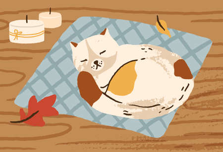 Cute hand drawn cat sleeping on carpet surrounded by autumn leaves and candles vector flat illustration. Domestic animal relax lying on wooden floor. Cozy fall atmosphere