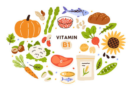 Collection of vitamin B1 sources. Food containing thiamin. Bread, nuts, vegetable, meat, fish, caviar, cereals. Dietetic products, organic nutrition. Flat vector cartoon illustration isolated
