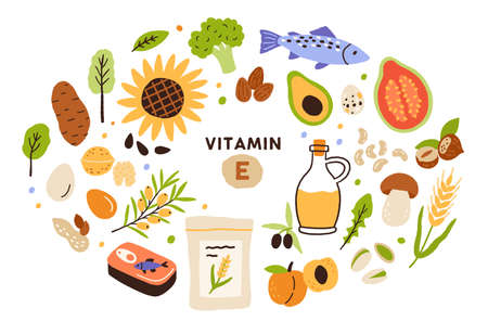 Collection of vitamin E sources. Balanced wholesome food. Fruits, vegetables, nuts, oil and fish. Dietetics products, organic. Flat vector cartoon illustration isolated on white background Vecteurs