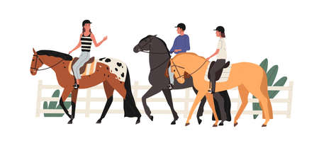 Group of young people riding horse at racecourse. Couple at equestrian school with instructor. Scene of horseriding or jockey training lesson. Flat vector cartoon illustration isolated on white. Ilustração