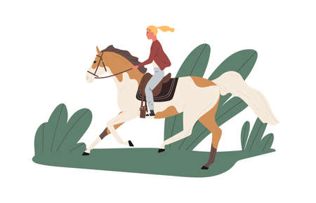 Equestrienne riding horse outdoors. Jockey ride stallion outside. Scene of horseback in nature and active recreation with animal. Flat vector cartoon illustration isolated on white.