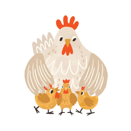 Cute clocking hen standing with yellow chicken and covering them with wings. Funny mom and baby birds. Colorful textured flat vector illustration isolated on white background