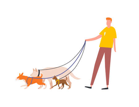 Funny guy holding pack of dogs on leash vector flat illustration. Male volunteer dog sitter walking with pets outdoor isolated on white. Service for care, walking domestic animals or nursery Ilustração