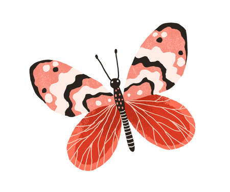 Hand drawn gorgeous butterfly with bright wings and antennae. Colored beautiful flying moth. Colorful flat textured vector illustration isolated on white background