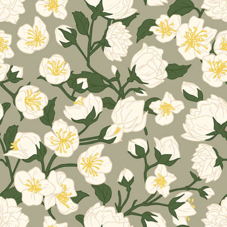 Seamless pattern of blossomed white jasmine flowers. Design of floral repeatable background for printing. Endless flowery texture with mock-oranges. Hand-drawn colored flat vector illustration