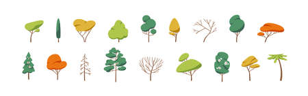 Collection of deciduous and evergreen forest plants isolated on white background. Botanical collection of bare trees and ones with leaves and lush crowns. Flat vector illustration on white background. Ilustração