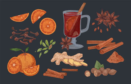 Mulled wine and spices hand drawn vector illustrations set. Flavoring seeds and herbs realistic color isolated cliparts pack. Winter season traditional drink ingredients. Ginger root, cinnamon sticks