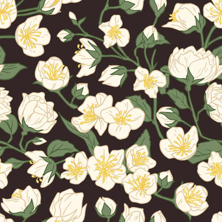 Seamless pattern of blossomed jasmine flowers on dark background. Design of floral repeatable backdrop for printing. Elegant flowery texture. Hand-drawn colored vector illustration