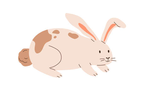 Cute spotted rabbit isolated on white background. Happy bunny. Funny animal character. Colored flat cartoon vector illustration