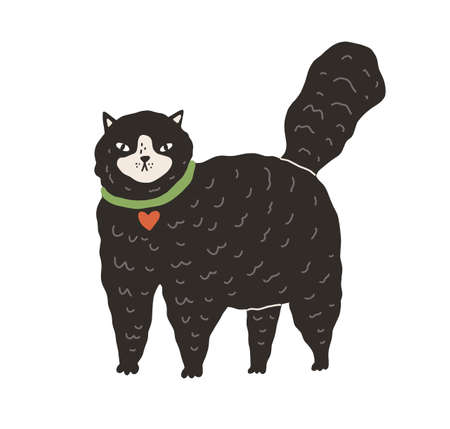 Cute black fluffy cat standing on all four paws with tail raised up. Big fat kitty isolated on white background. Hand-drawn colored flat vector illustration in doodle style