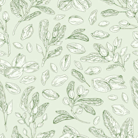 Seamless pistachio pattern with nuts, shells, branches and leaves. Monochrome design of endless monochrome background with pistaches. Hand-drawn colored vector illustration for printing
