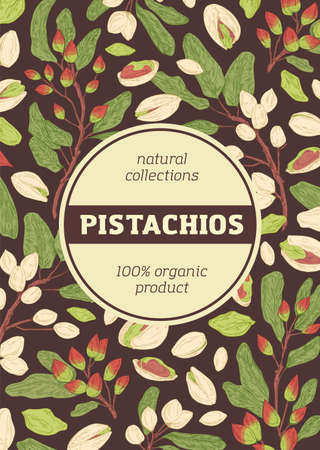 Design of packaging with pistachio pattern on dark background. Vertical packing template with branches, leaves, shells and kernel of pistaches. Hand-drawn colored vector illustration Vecteurs