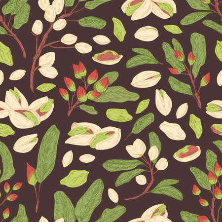 Seamless pistachio pattern with nuts, shells, branches and leaves. Endless texture with realistic pistaches on black background. Hand-drawn colored vector illustration for printing and decoration Illusztráció