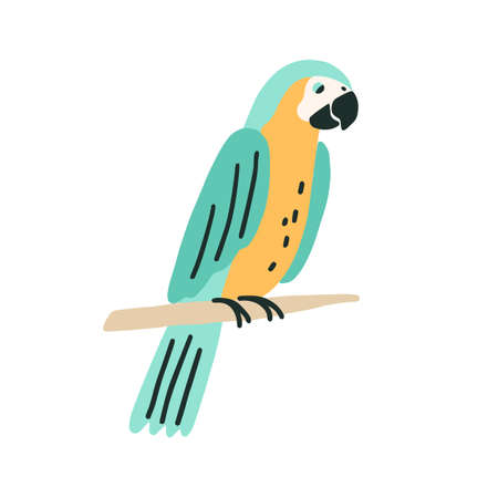 Black-and-yellow macaw sitting on tree branch. Colorful ara with bright feathers. Exotic bird with long tail. Colorful flat vector illustration of parakeet isolated on white background Stock Illustratie