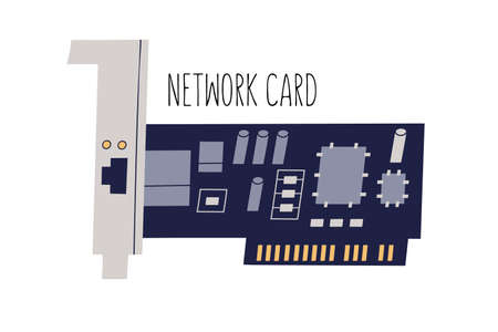 Network interface adapter, controller or card. Computer internal hardware component. Colored flat vector illustration of NIC or LAN isolated on white background