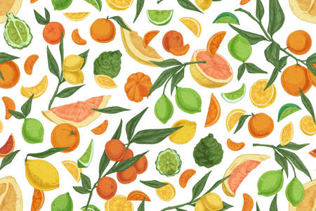 Seamless pattern with different citrus fruits on white background. Hand-drawn endless texture with oranges, lemons, tangerines, bergamot and grapefruits. Colored vector illustration for printing