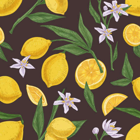 Seamless citric pattern with fruits, leaves and branches of blooming lemon tree on dark background. Endless hand-drawn texture in vintage style. Colored vector illustration for printing