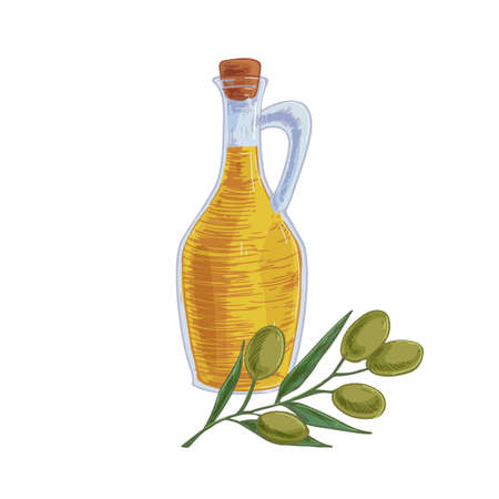 Composition of transparent glass pitcher full of fresh extra virgin olive oil and tree branch with fruits. Corked jug isolated on white. Colored realistic hand-drawn vector illustration Stock Illustratie