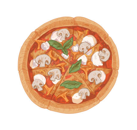 Top view of mushroom pizza with champignons, chanterelles, mozzarella cheese, sauce, basil leaves and thick crust. Hand-drawn Italian vegetarian food. Vector illustration isolated on white background Stock Illustratie