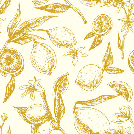 Seamless monochrome pattern with citrus fruits on blooming lemon tree branches with leaves. Endless repeatable background in retro style. Hand-drawn vector illustration for printing and decoration