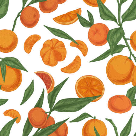 Seamless citrus pattern with tangerine, mandarin or clementine branches on white background. Endless repeating texture in vintage style. Colored hand-drawn vector illustration for printing